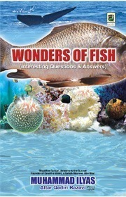Wonders of Fish - Interesting Questions & Answers